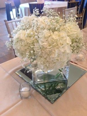 baby's breath and hydrangeas - Google Search