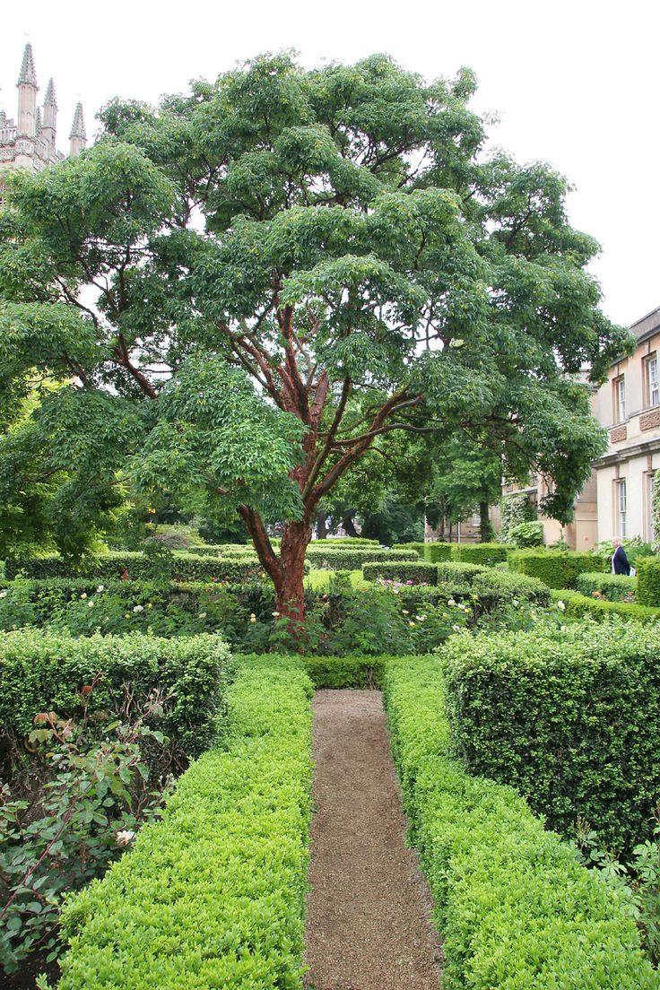 193 best green culture images on pinterest gardens landscape