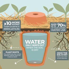 So machen Sie Ihren Garten mit unglasierten Tontöpfen trockenheitsfest. – Das Permakult …