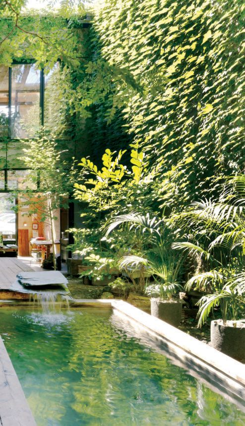 Green pool and waterfall feature in a Montreal courtyard.