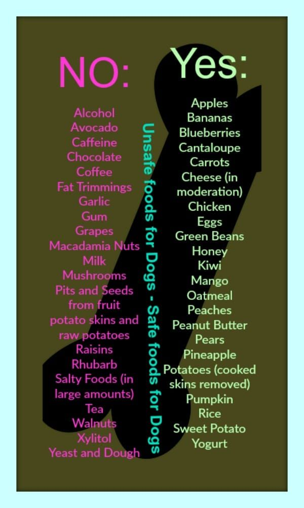 Unsafe foods for Dogs - Safe foods for Dogs. Please Repin. #carbswitch
