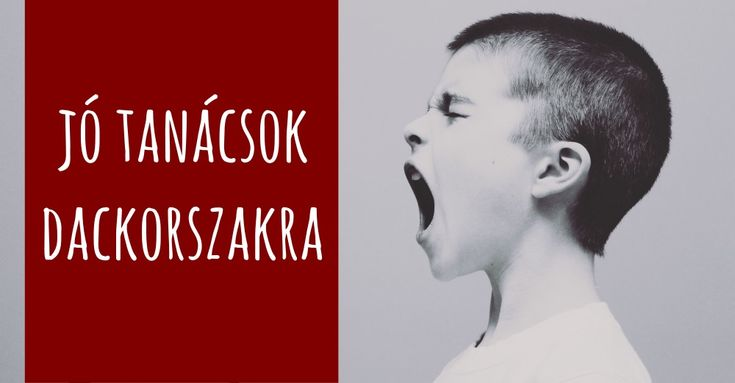 Magyarországon is egyre nagyobb népszerűségnek örvend a Montessori módszer. De mi is ez a módszer és mitől ennyire hatásos?