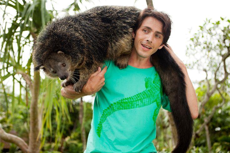Animal encounter with Binturong The Bearcat at Bali Zoo