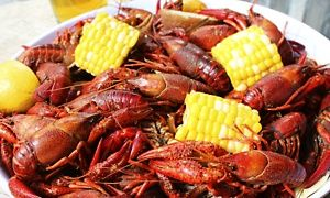 Groupon - Two or Four Admissions with Optional Crawfish Platters at NOLA Funk Crawfish & Music Festival (Up to 38% Off) in Governor's Beach Club. Groupon deal price: $60
