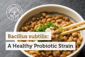 Bacillus subtilis: A Healthy Probiotic Strain https://blogjob.com/healthblogs/2017/04/05/bacillus-subtilis-a-healthy-probiotic-strain/