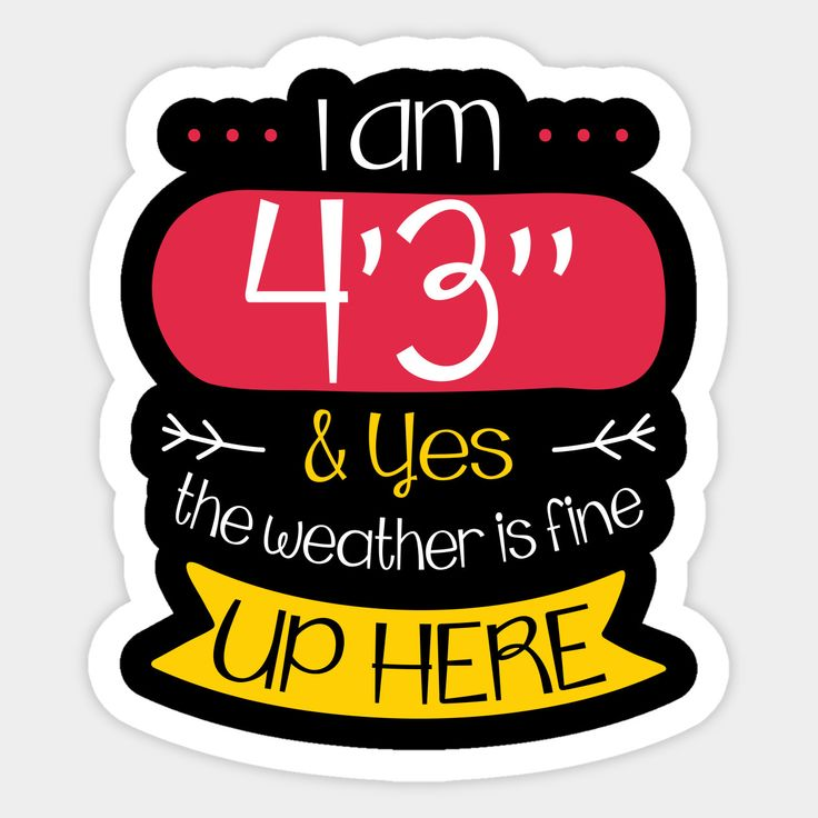 I Am 4 3 R And Yes The Weather Is Fine Up Here Meme Saying Sticker Sarcastic Humor Funny Stickers Stickers
