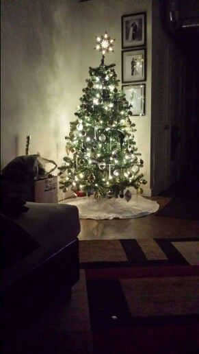 O Christmas Tree...!