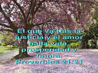 Biblia, paisajes y maravillas: Proverbios 21:21