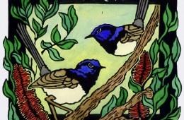Blue Wrens linocut Lynette Weir