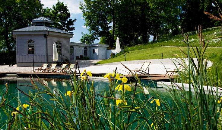 Natural biotopical swimming lake