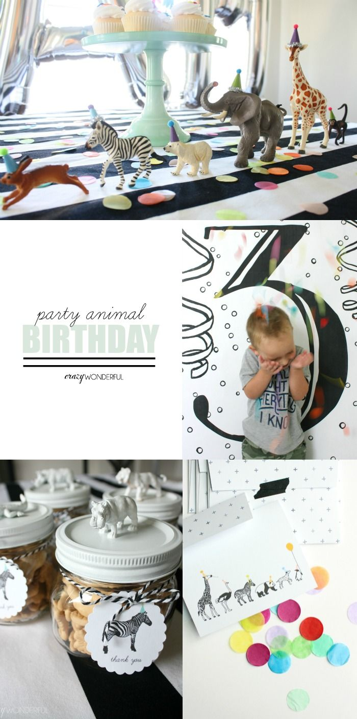 Crazy Wonderful: samuel's 3rd birthday party, party animal birthday, animal theme, plastic animals, boy birthday, gender neutral birthday party decor idea