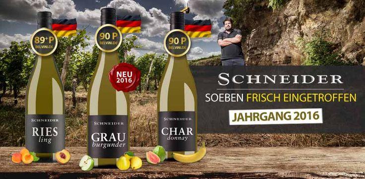 Markus Schneider News! Riesling, Grauburgunder & Chardonnay 2016 brandneu eingetroffen - http://weinblog.belvini.de/markus-schneider