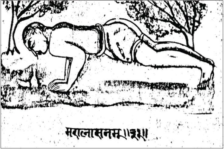 fig 20 āsana No. 31 - Marālāsana or more popularly at the time of writing Hansasana - more recently chatauranga dandasana