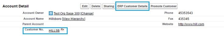 Real-time details in GUMU™ SAGE 100 ERP Integration for Salesforce