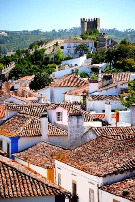 Oh so many days spent running these small streets as a kid...precious memories!!!Obidos, Portugal