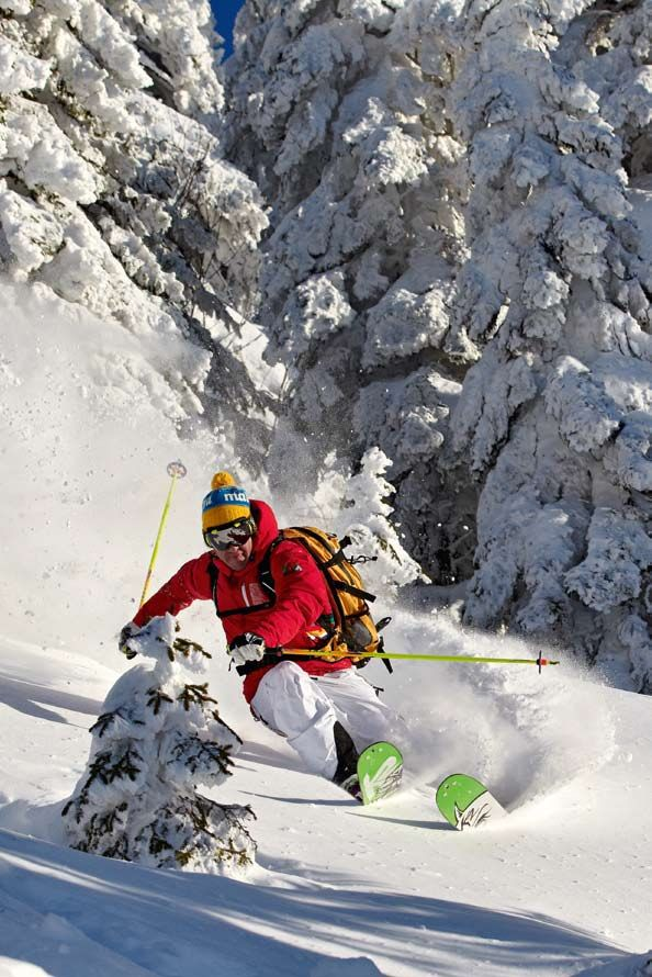 Free skiing. aka telemark skiing. Try it in Telemark Norway where it was invented