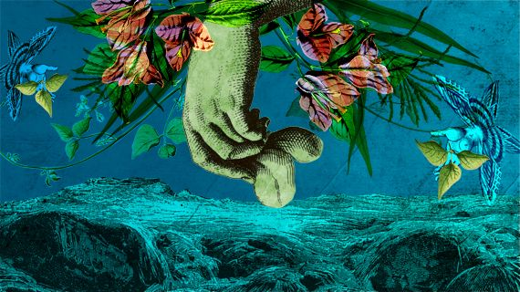 El método biológico denominado biorremediación ha cobrado gran interés para la limpieza de contaminación en suelos, debido a que es un método amigable con el ambiente y, además, de bajo costo.