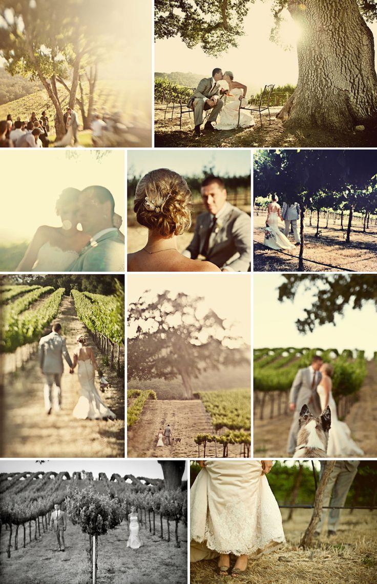 Vineyard wedding.