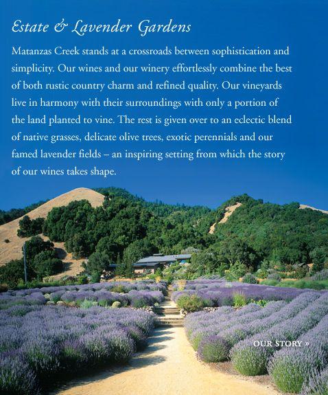 Welcome to Matanzas Creek Winery