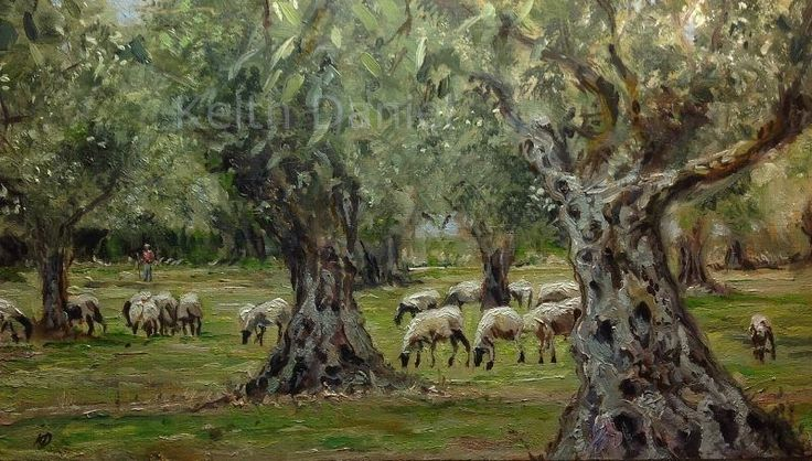 Olive grove sheep and shepherd- Οil on panel- KDaniel