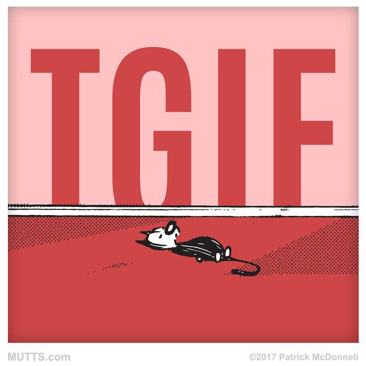 YESH! It's Friday! How are you spending your weekend? #muttsofinstagram #loveMUTTS #dogsofinsta #dogsandpals #doglove #cats #TGIF #Friday #catsofinsta #MUTTScomics #MUTTS #MUTTSofinstagram...