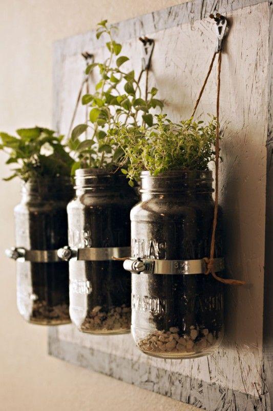 hanging inside garden  Crunchy Betty: Gardens Ideas, Indoor Herbs, Jars Planters, Hanging Herbs Gardens, Herbgarden, Mason Jars Herbs, Mass Jar Planter, Hanging Herb Gardens, Diy