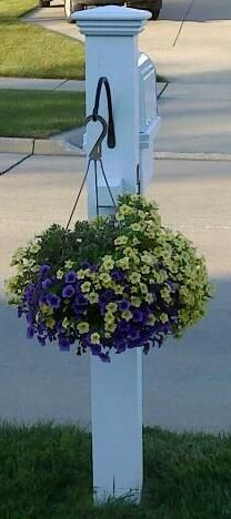 Been looking for a simple way to add flowers to the mailbox. Flowers hanging on a mail box adorable...