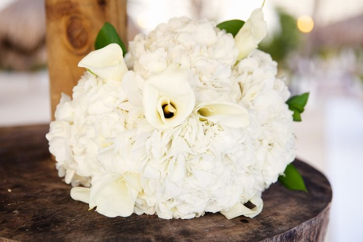 Aruba, Destination Wedding by photoguzman.com  #Weddingphotography, #aruba, #LAweddingphotographer, #Photography, #love, #riuhotelaruba, #destinationwedding, #beachwedding, #bouquet