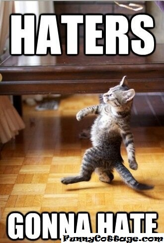 lol: Gonna Hate, Cats, Animals, Quote, Haters Gonna, Funny Stuff, Funnies, Humor