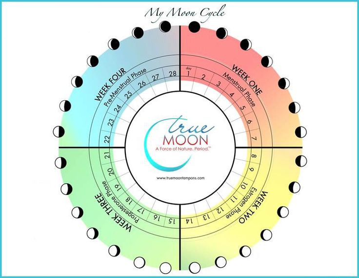 Learn about your cycle – TrueMoon