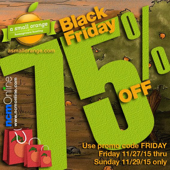 A Small Orange Black Friday 75% Off Coupon Code