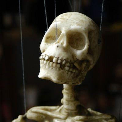 Ile kości ma dorosły człowiek? 206! Zaraz po urodzeniu człowiek posiada ponad 270 oddzielnych kości. Jednak podczas dorastania wiele z nich się łączy (w czaszce, w kręgosłupie). Ostatecznie prowadzi to do liczby 206 oddzielnych kości u osoby dorosłej.