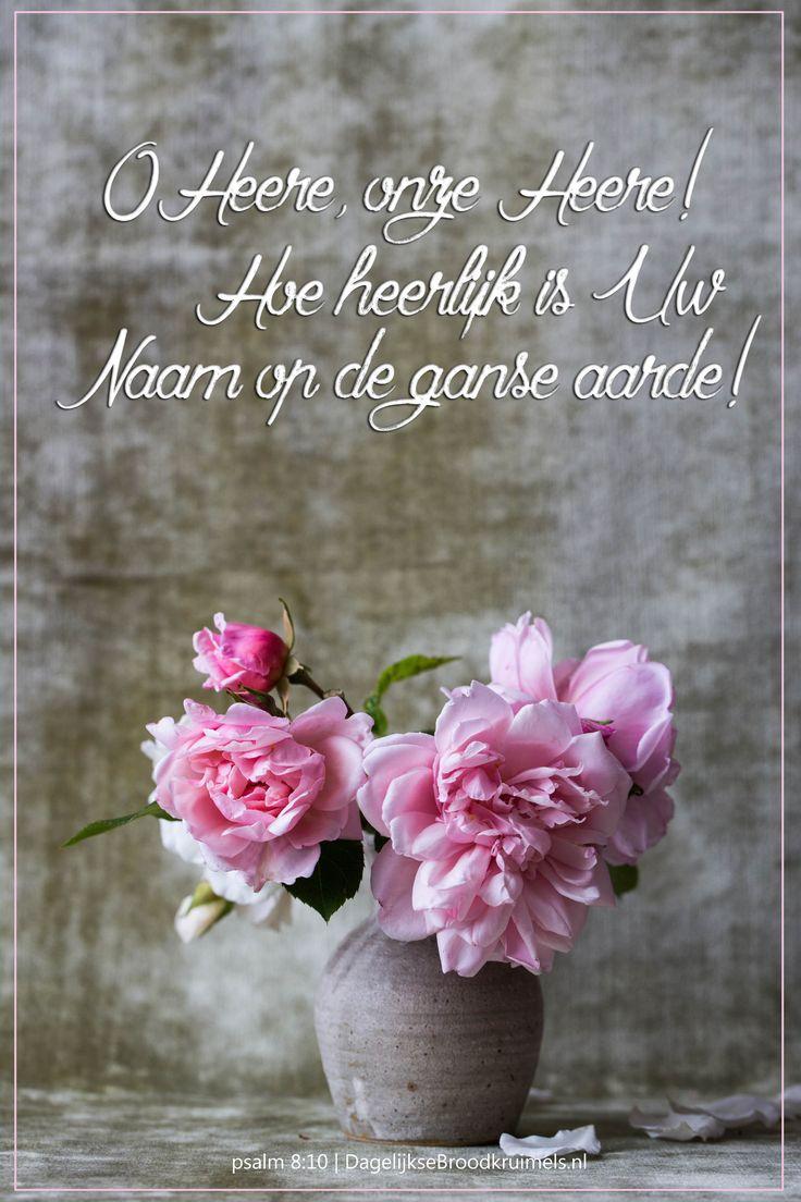 O Heere, onze Heere! Hoe heerlijk is Uw naam op de ganse aarde! Psalm 8:10…