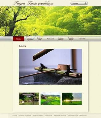 Webdesign plan, gallery page