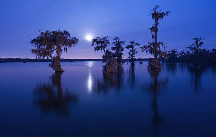 Lake Martin - See more of the best places to photograph in LA at http://loadedlandscapes.com/la-photography-locations/  // Photo by Chris Litherland - https://commons.wikimedia.org/wiki/File:ChrisLitherlandLakeMartin.jpg