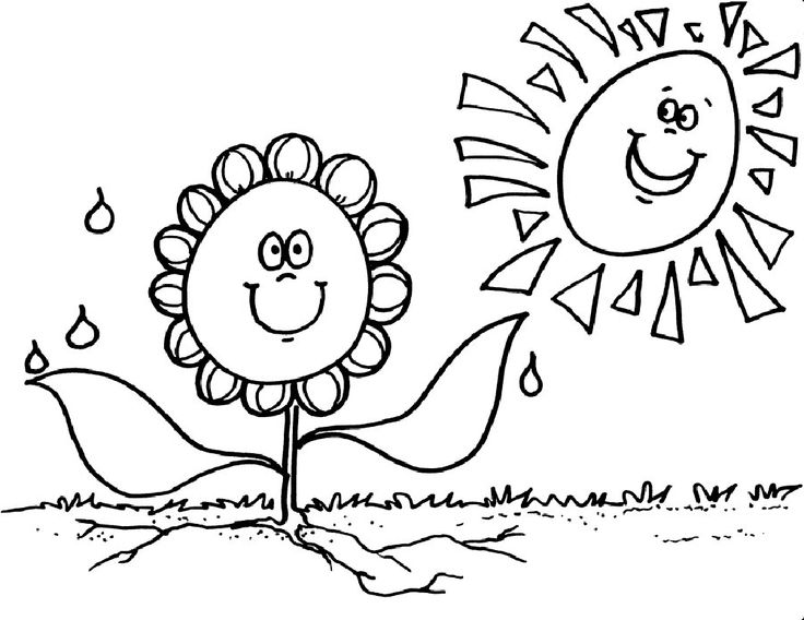 flowers wild flower coloring page various type of flower coloring page smiling sun flower coloring page flowers - Gardening Coloring Pages