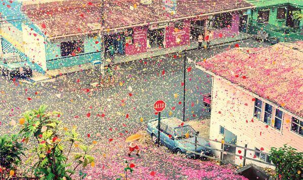 8 Million Flower Petals Cover An Entire Village In Costa Rica (9 pics  video):