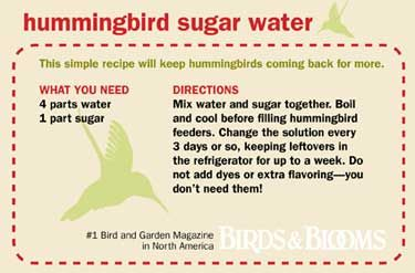 hummingbird sugar water/butterfly sugar water/easy suet cupcakes/freezing herbs/potting soil mix