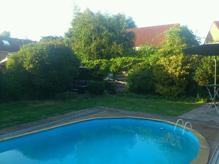 Deel zwembad + tuin