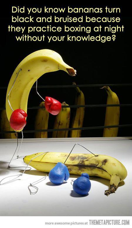 What bananas do at night… This makes so much sense!
