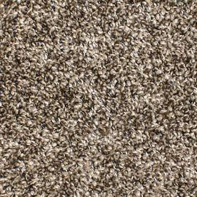 Stainmaster Bronson Essentials Playtime Plush Carpet Sample S747890playtime-Time