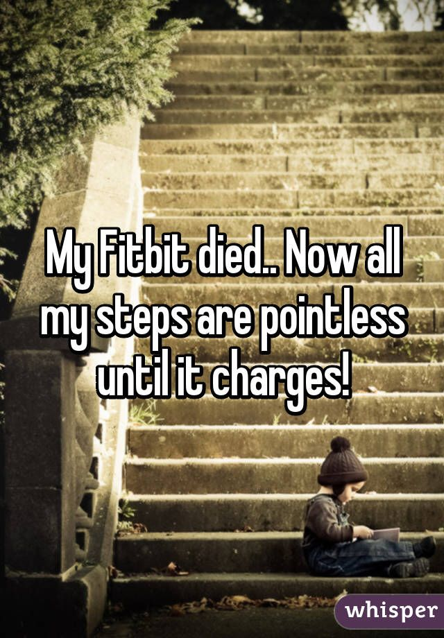 Fitbit Stock Quote Simple 47 Best Fitbit Humor Images On Pinterest  Funny Memes Funny Stuff .