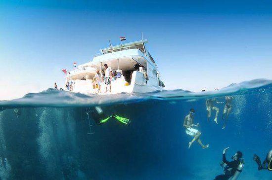 iDive Diving Centre, Makadi Bay: See 251 reviews, articles, and 265 photos of iDive Diving Centre, ranked No.1 on TripAdvisor among 8 attractions in Makadi Bay.