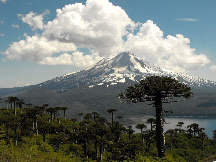 El Lago Conguillío con el Volcán Llaima , Chile