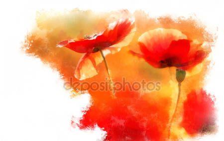 Pobieraj - Akwarela Czerwone maki — Obraz stockowy #34393765