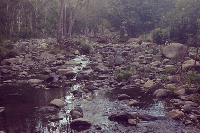 Cedar Creek Samford and Andy Williams Park- 2 awesome waterholes and natural river systems for Brisbane families.