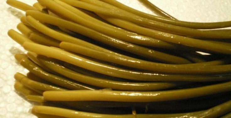 Лечебные свойства черемши (медвежий лук), витамины