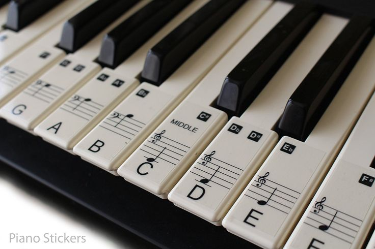 Music Keyboard or Piano Stickers 61 KEY SET