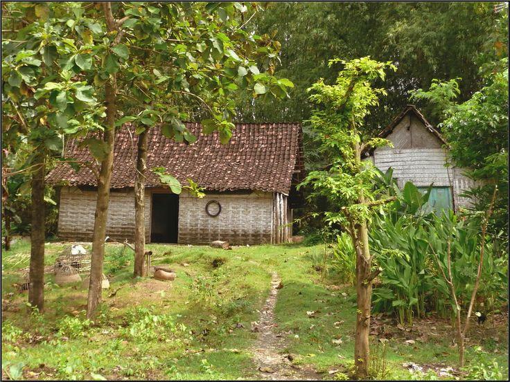 Rumah pedesaan