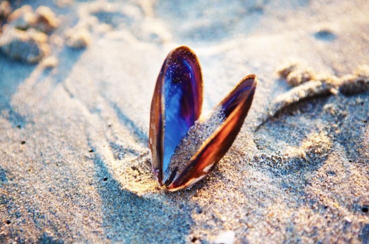 """#Capturethecolourcontest  RACHEL SERRUYA  """"heart in the sand"""""""